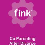 Co Parenting After Divorce